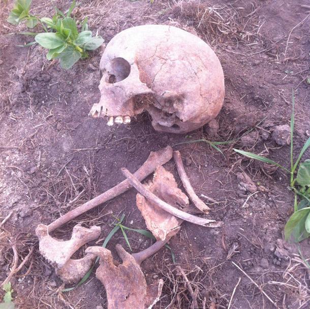 Human-remains-original-find
