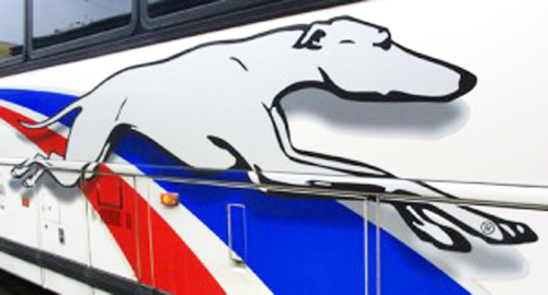 Greyhound Applies For Passenger Cancellation The Weekly